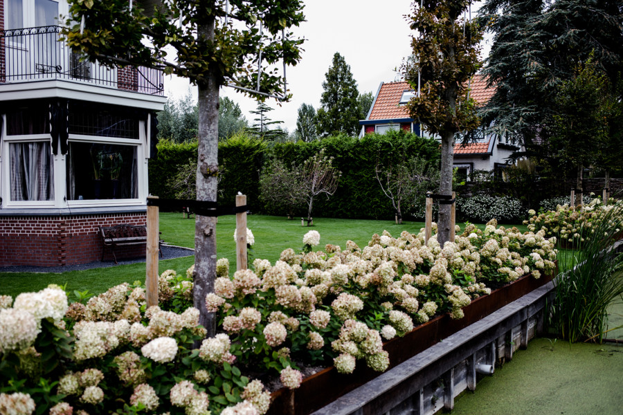 Hovenier Delft