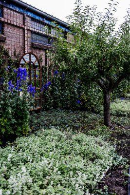 Tuinrenovatie Rotterdam