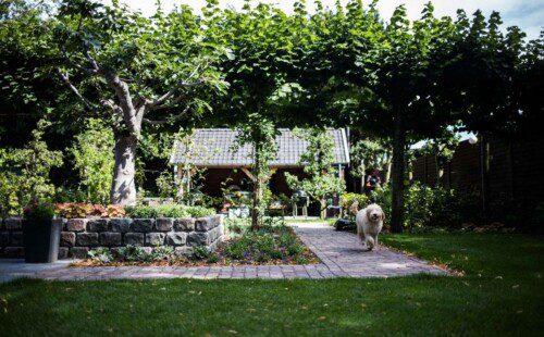 Prachtige Landelijke tuin