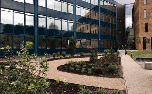 Schoolplein Hoornbeeck college te Rotterdam